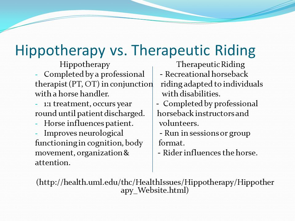 Hippotherapy vs. Therapeutic Riding