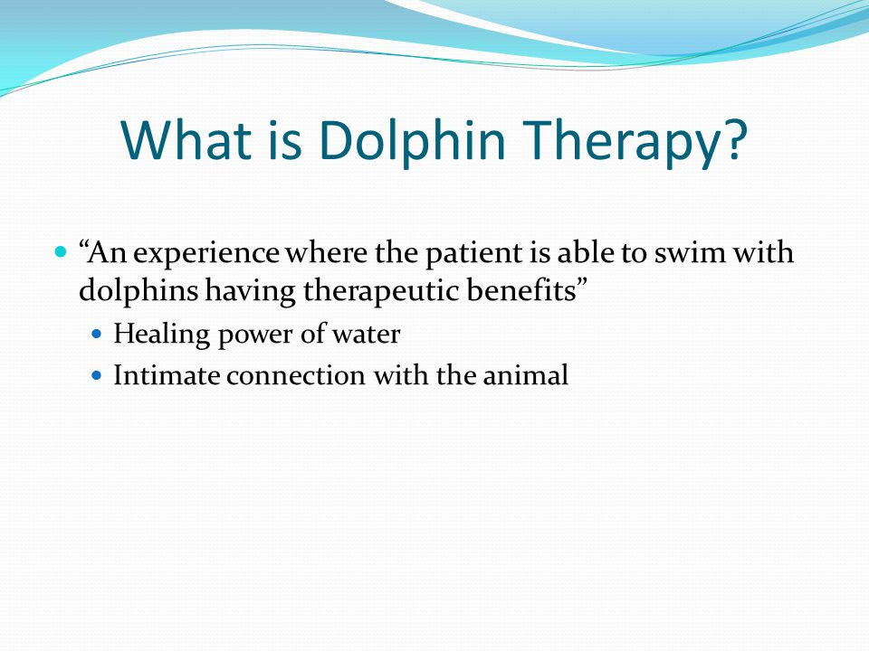 What is Dolphin Therapy