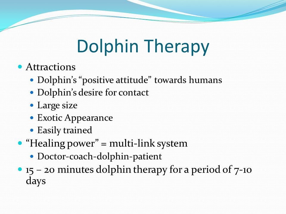 Dolphin Therapy Attractions Healing power = multi-link system