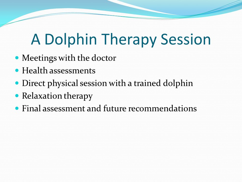 A Dolphin Therapy Session