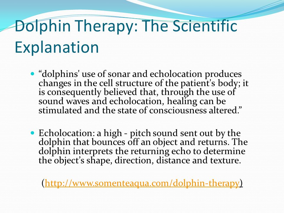 Dolphin Therapy: The Scientific Explanation