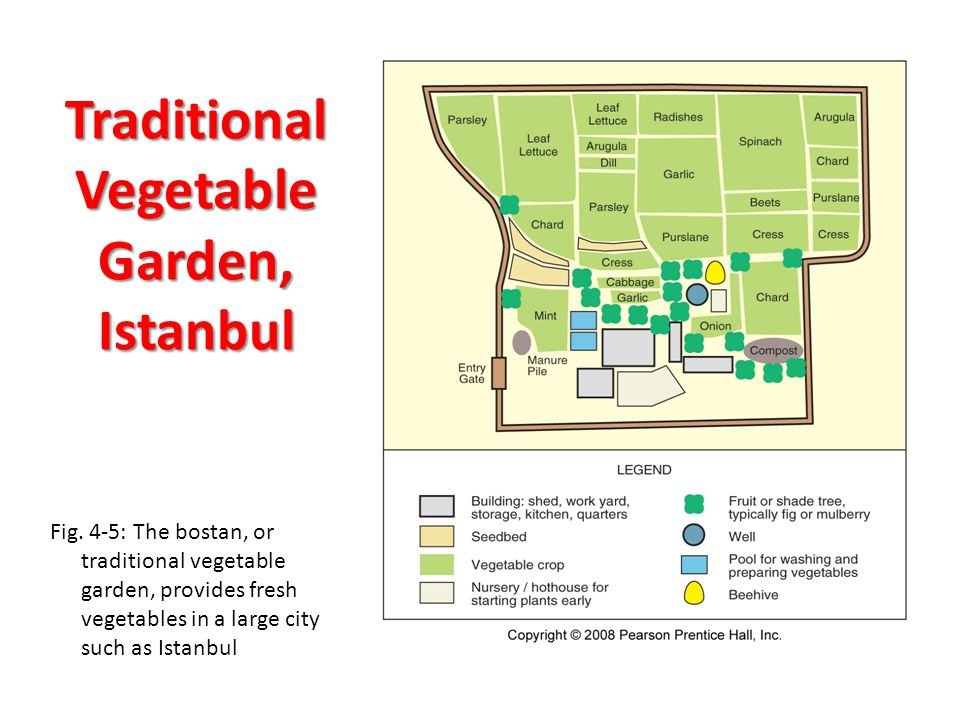 Traditional Vegetable Garden, Istanbul