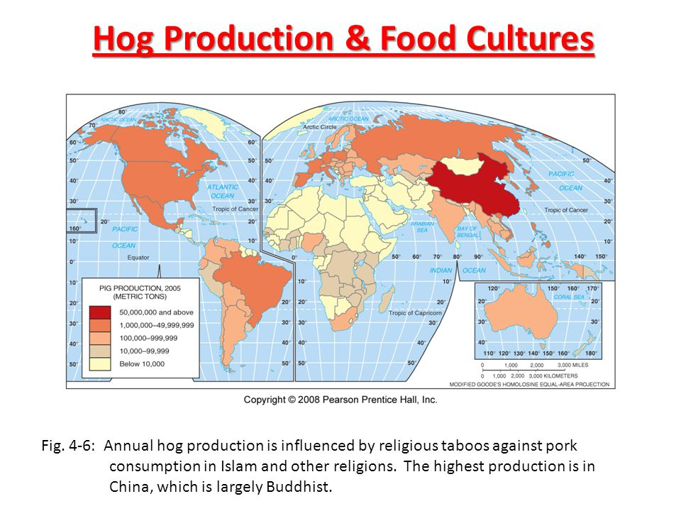 Hog Production & Food Cultures