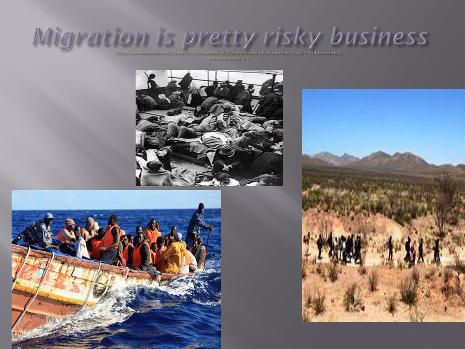 Migration is pretty risky business http://www. eutimes
