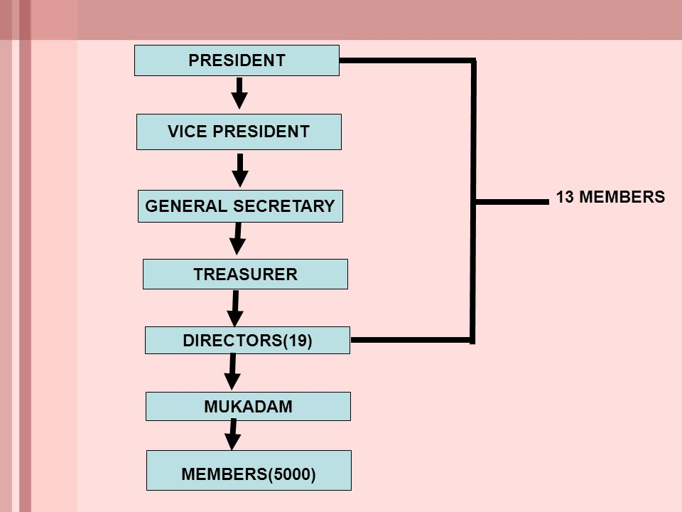 PRESIDENT VICE PRESIDENT GENERAL SECRETARY TREASURER DIRECTORS(19) MEMBERS(5000) MUKADAM 13 MEMBERS