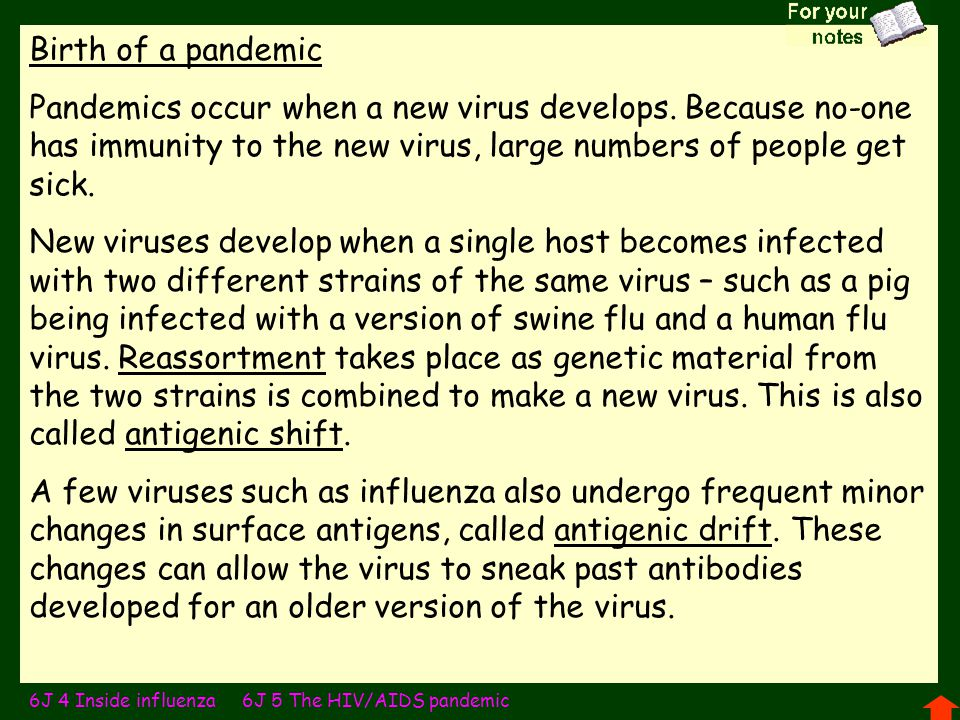 Birth of a pandemic Pandemics occur when a new virus develops. Because no-one has immunity to the new virus, large numbers of people get sick.