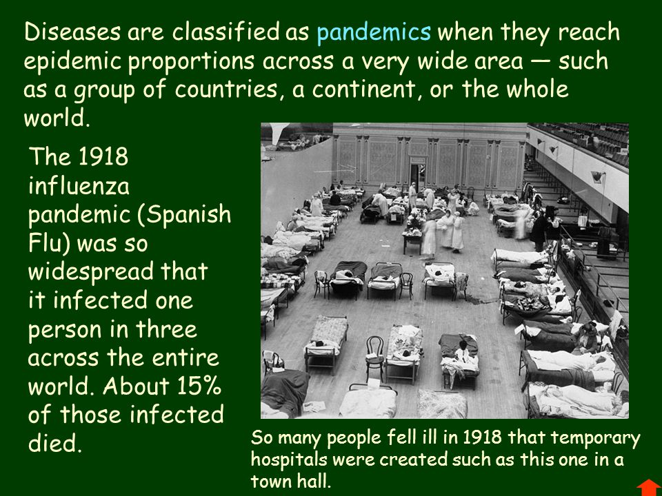 Diseases are classified as pandemics when they reach epidemic proportions across a very wide area — such as a group of countries, a continent, or the whole world.