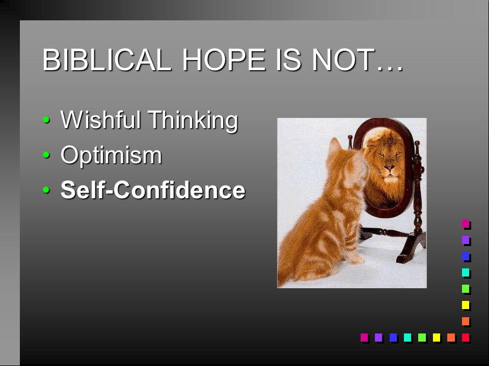 BIBLICAL HOPE IS NOT… Wishful Thinking Optimism Self-Confidence