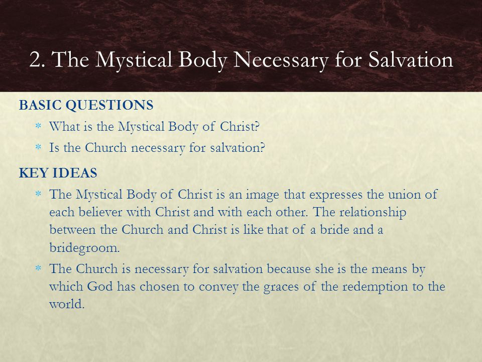 2. The Mystical Body Necessary for Salvation