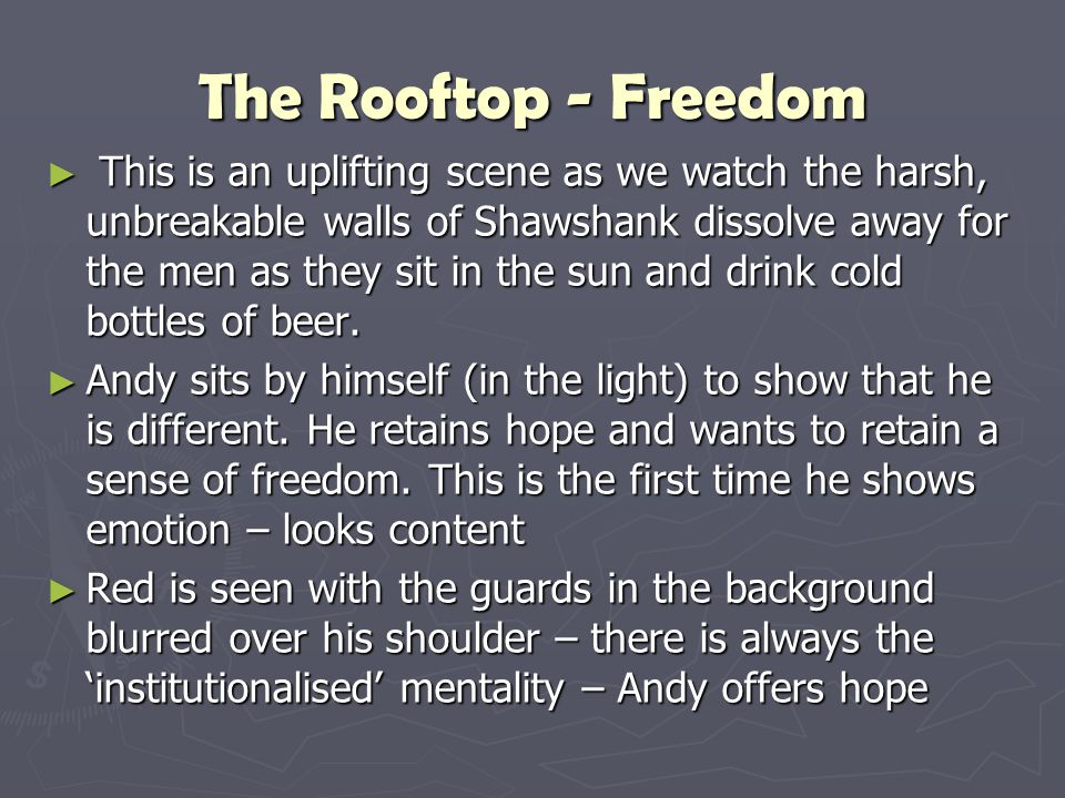The Rooftop - Freedom