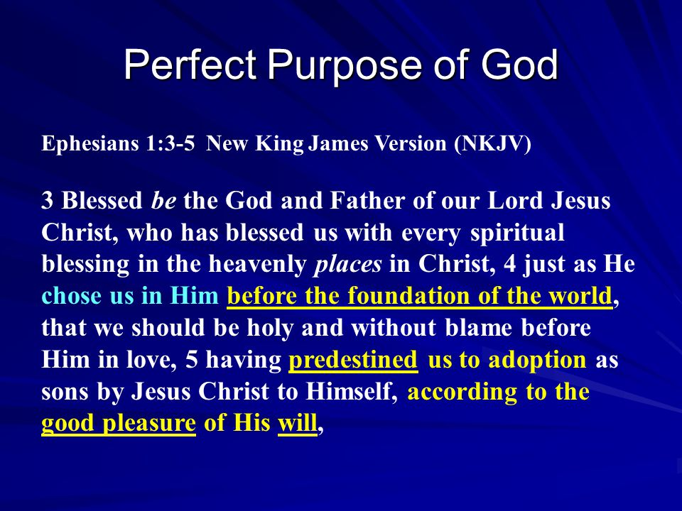 Perfect Purpose of God Ephesians 1:3-5 New King James Version (NKJV)