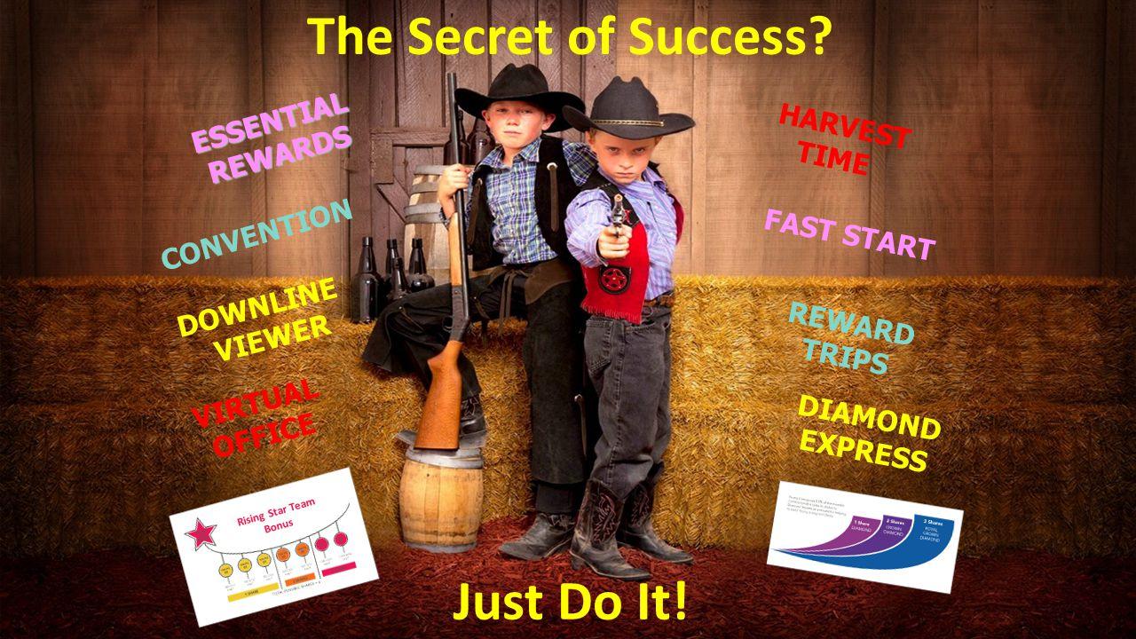 The Secret of Success Just Do It!
