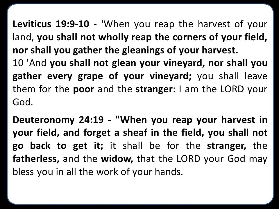 Leviticus 19:9-10 - When you reap the harvest of your land, you shall not wholly reap the corners of your field, nor shall you gather the gleanings of your harvest.