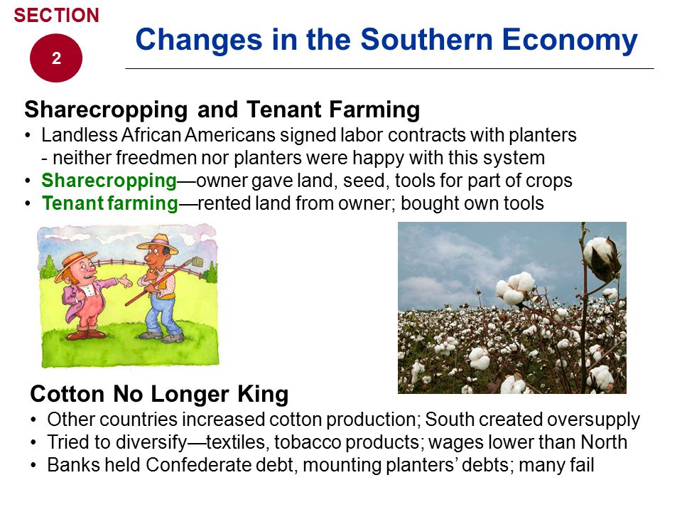Changes in the Southern Economy