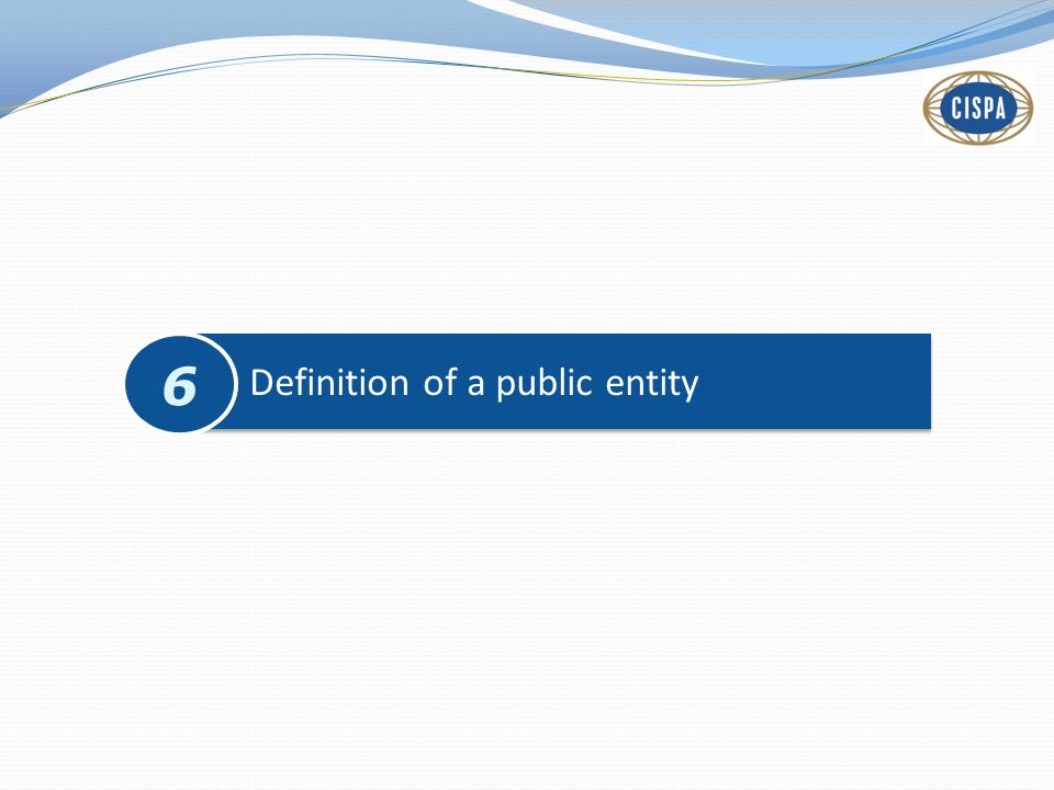 Definition of a public entity