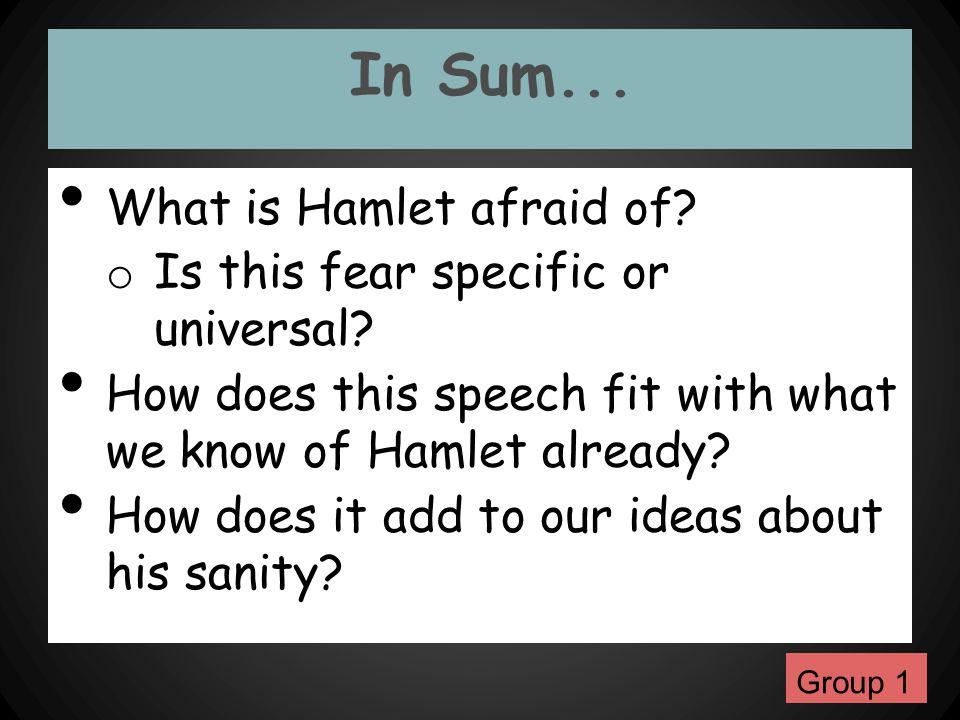 In Sum... What is Hamlet afraid of