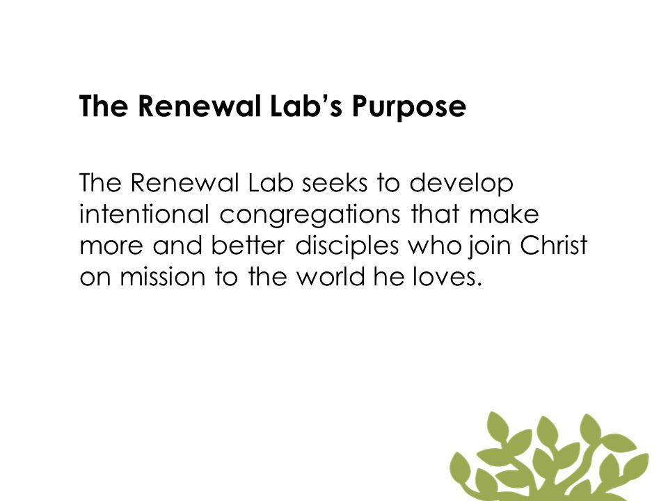 The Renewal Lab's Purpose