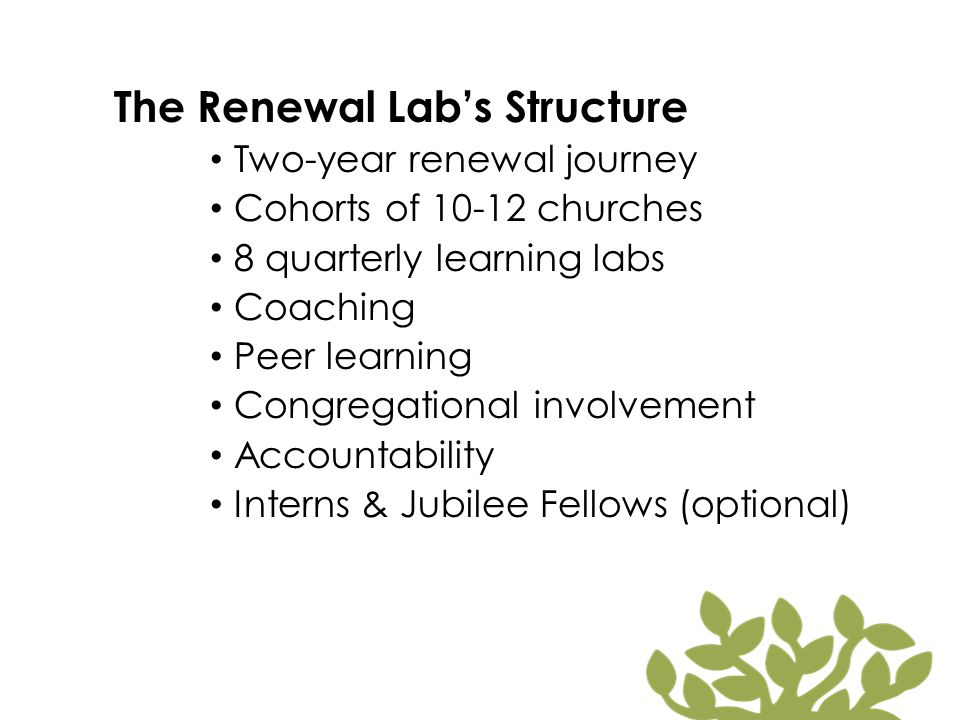 The Renewal Lab's Structure