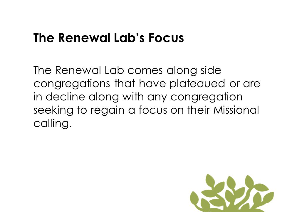 The Renewal Lab's Focus