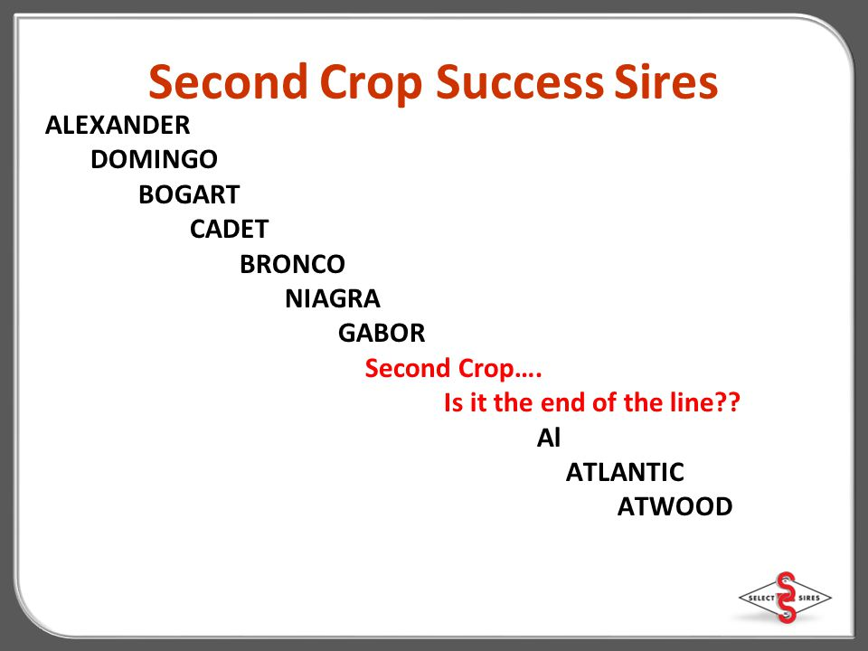 Second Crop Success Sires