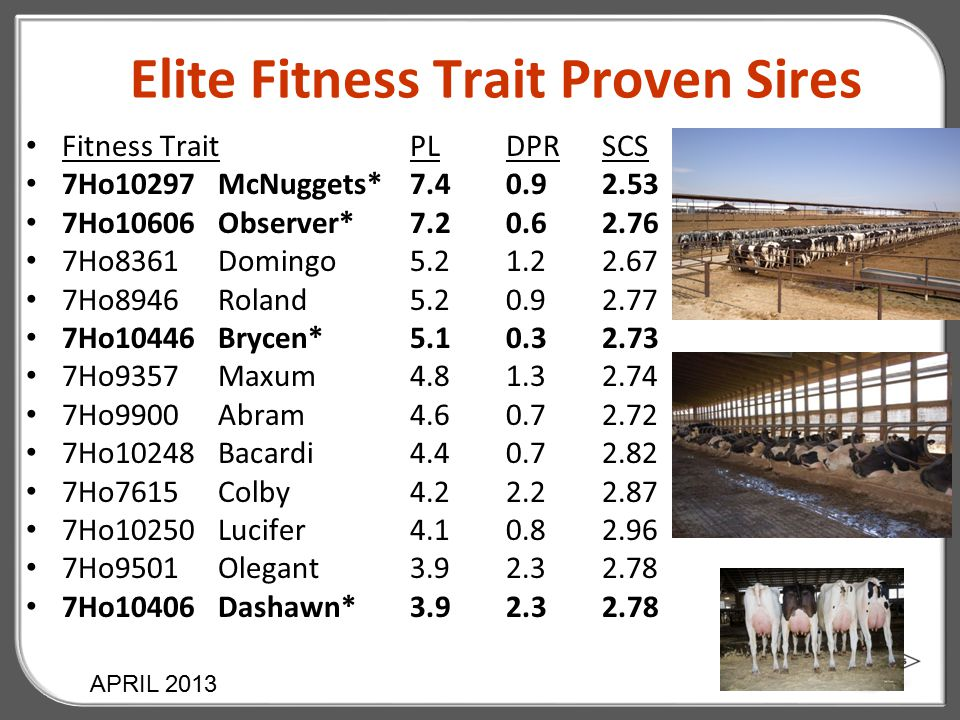Elite Fitness Trait Proven Sires