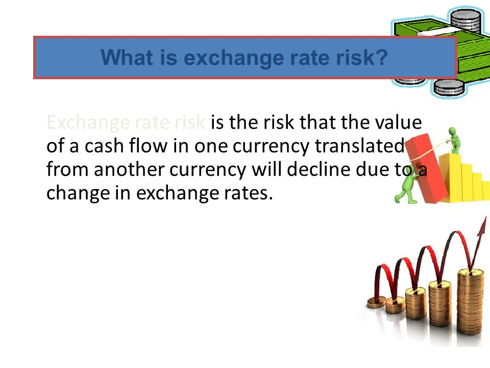 What is exchange rate risk