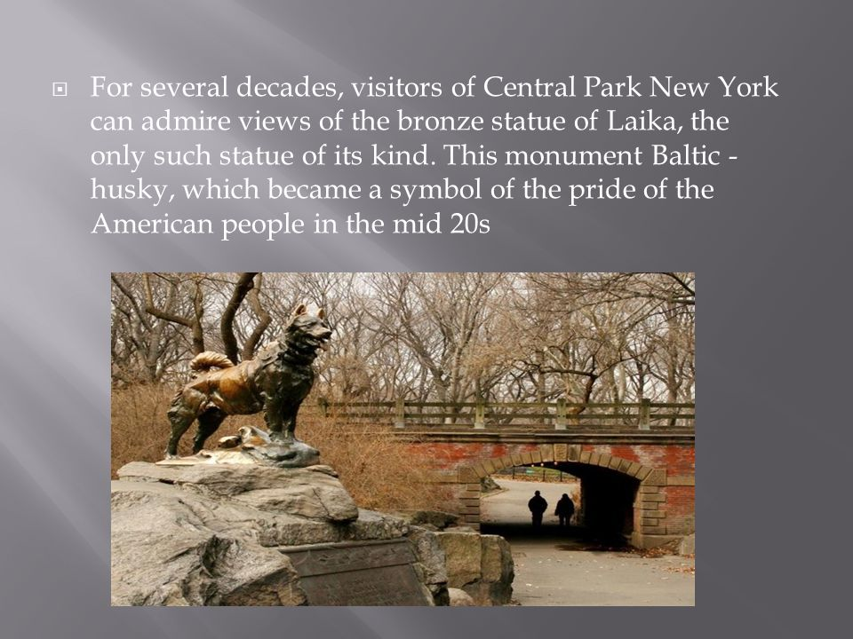 For several decades, visitors of Central Park New York can admire views of the bronze statue of Laika, the only such statue of its kind.
