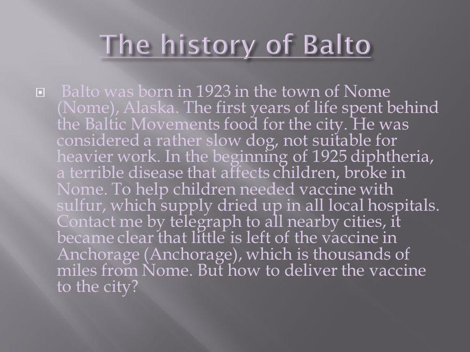 The history of Balto