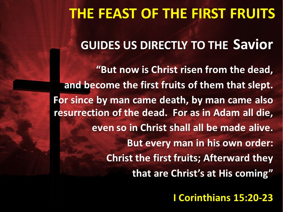 THE FEAST OF THE FIRST FRUITS
