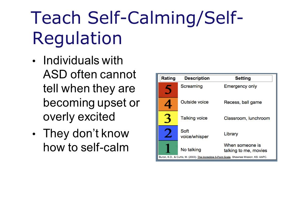 Teach Self-Calming/Self-Regulation