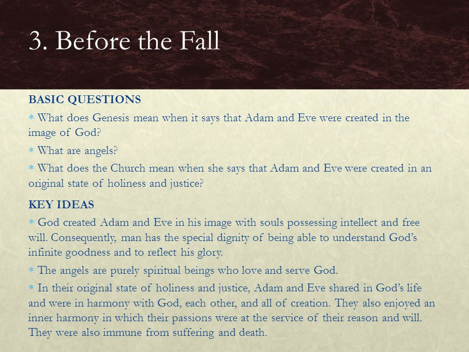3. Before the Fall BASIC QUESTIONS