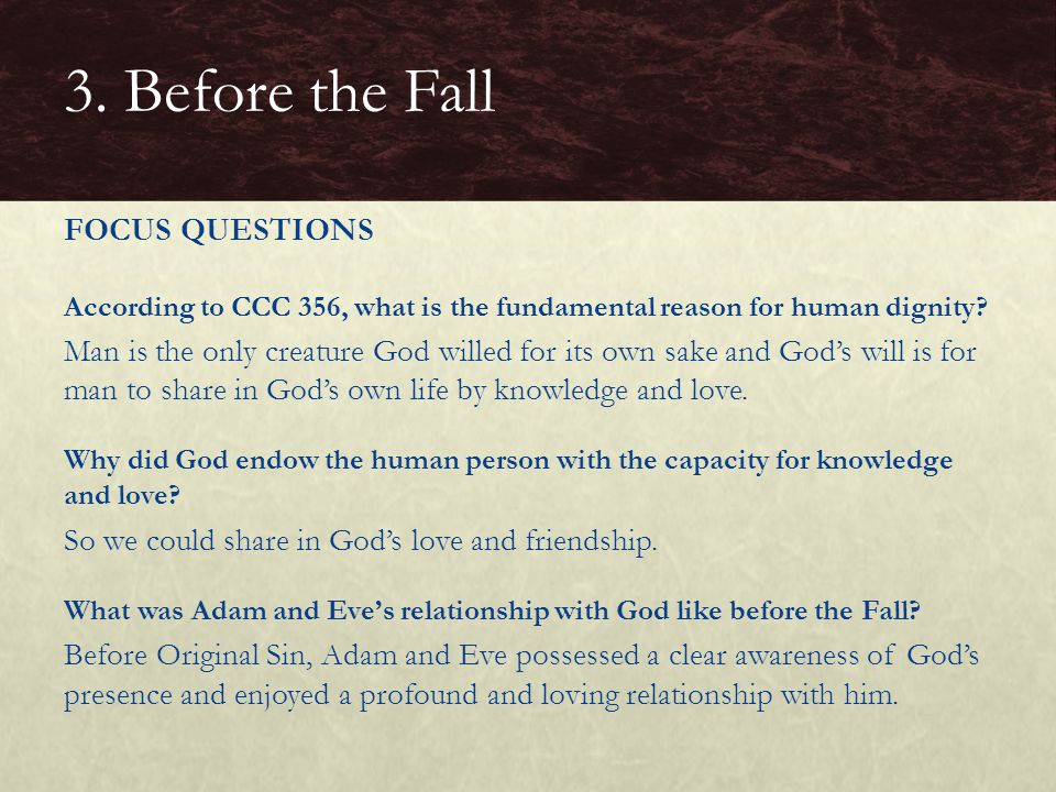 3. Before the Fall FOCUS QUESTIONS