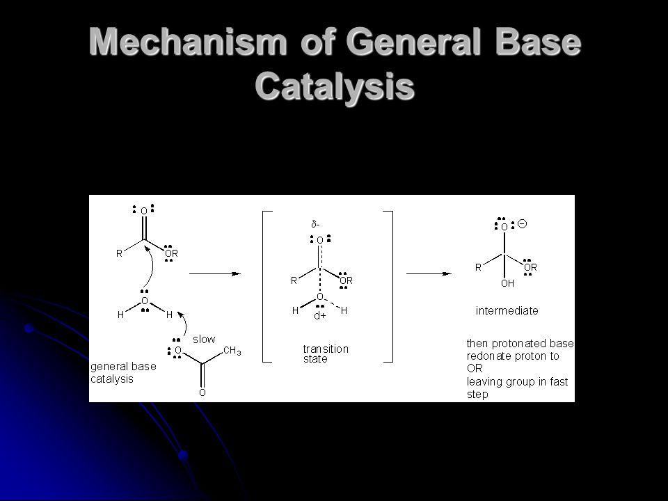 Mechanism of General Base Catalysis