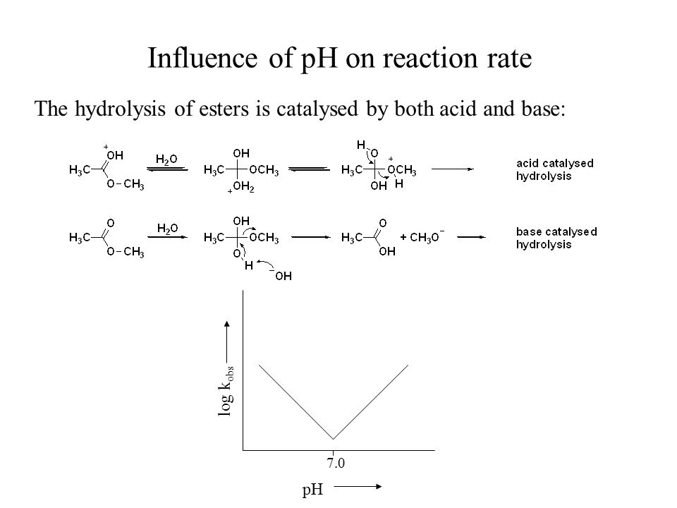 Influence of pH on reaction rate