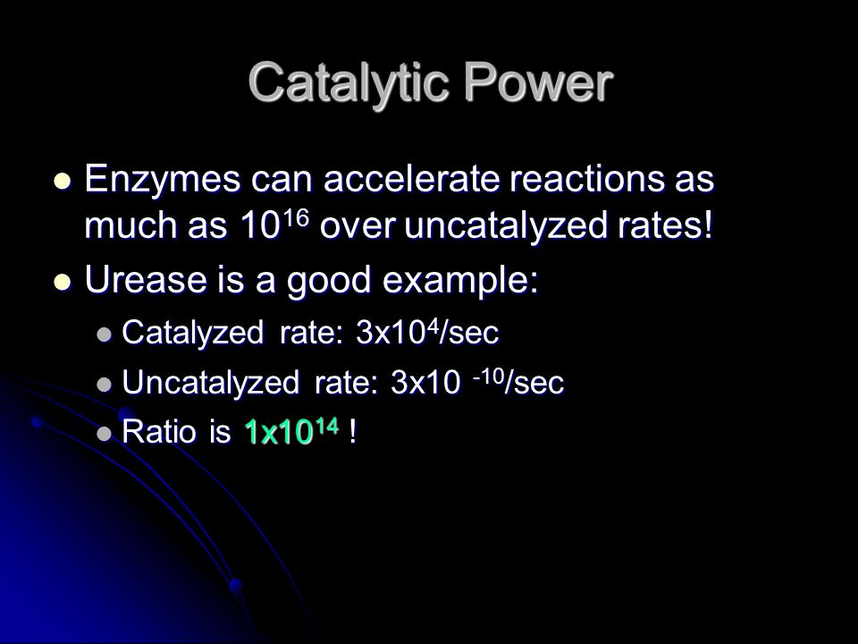 Catalytic Power Enzymes can accelerate reactions as much as 1016 over uncatalyzed rates! Urease is a good example: