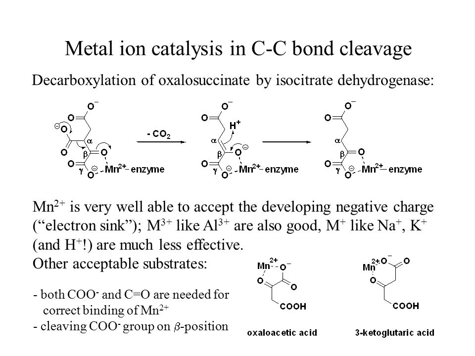 Metal ion catalysis in C-C bond cleavage