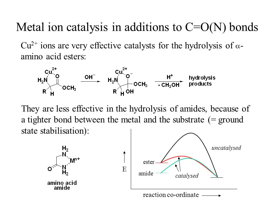 Metal ion catalysis in additions to C=O(N) bonds