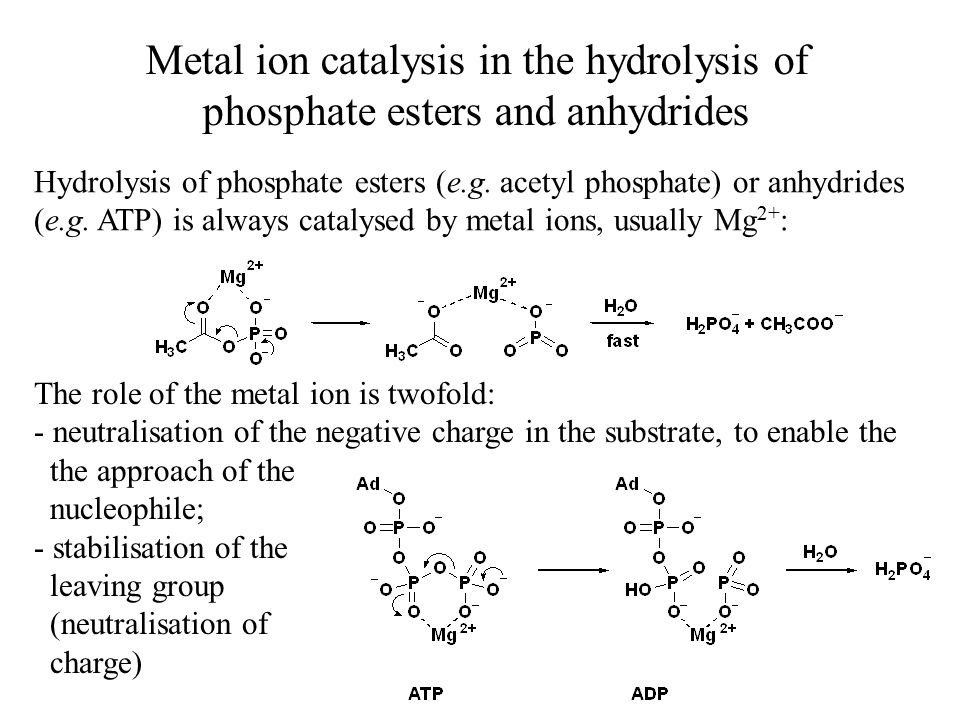 Metal ion catalysis in the hydrolysis of phosphate esters and anhydrides