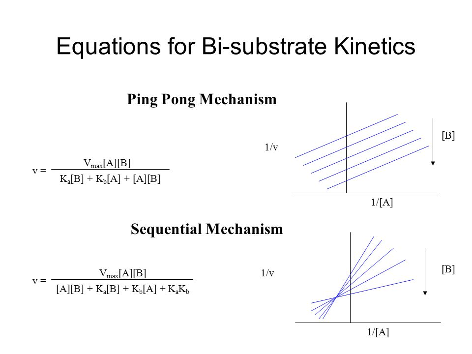Equations for Bi-substrate Kinetics