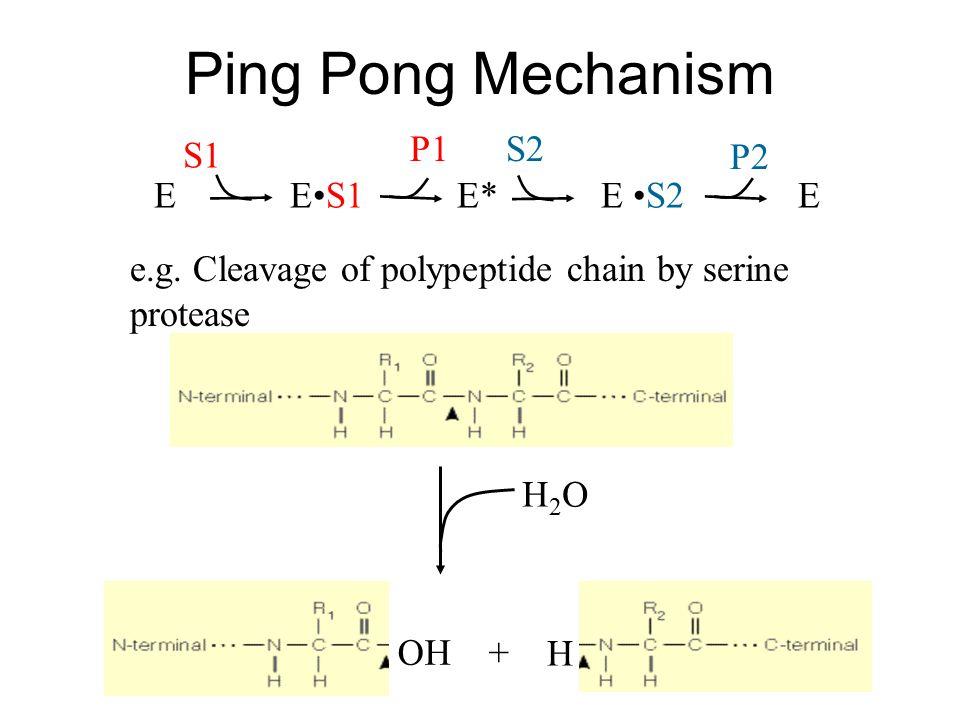 Ping Pong Mechanism E E* E •S2 E E•S1 S2 S1 P1 P2