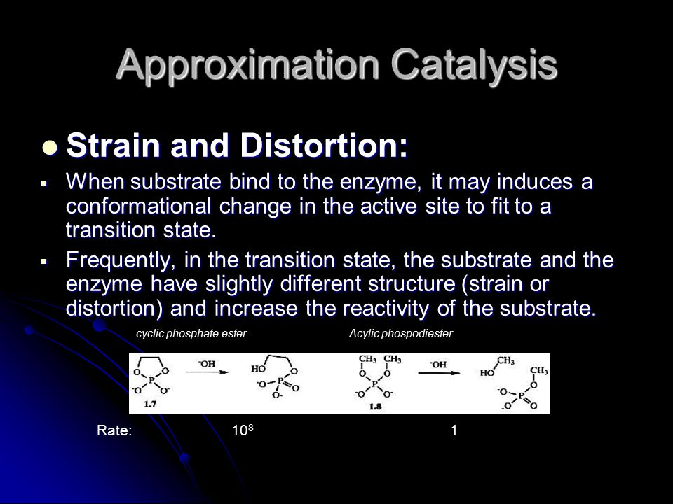 Approximation Catalysis