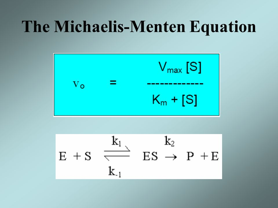 The Michaelis-Menten Equation