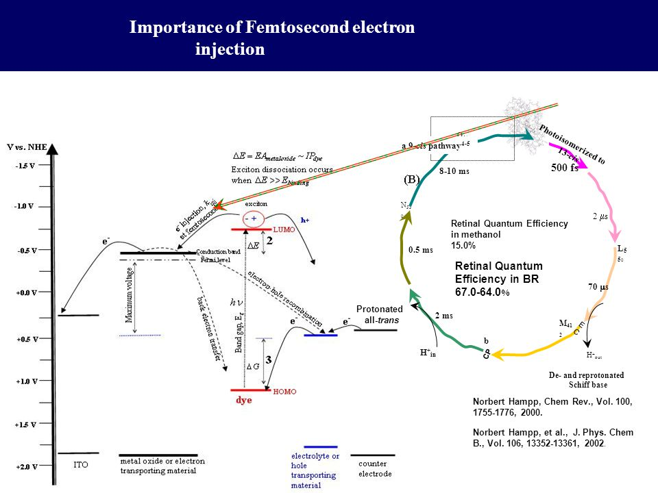 Importance of Femtosecond electron injection