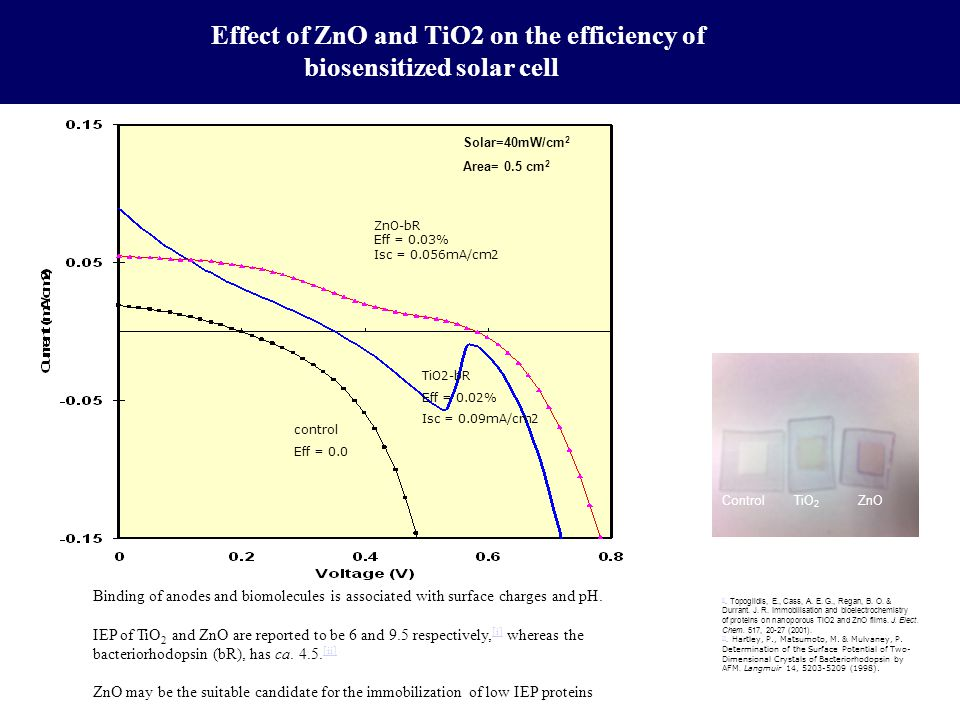 Effect of ZnO and TiO2 on the efficiency of biosensitized solar cell