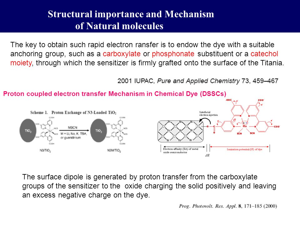 Structural importance and Mechanism of Natural molecules