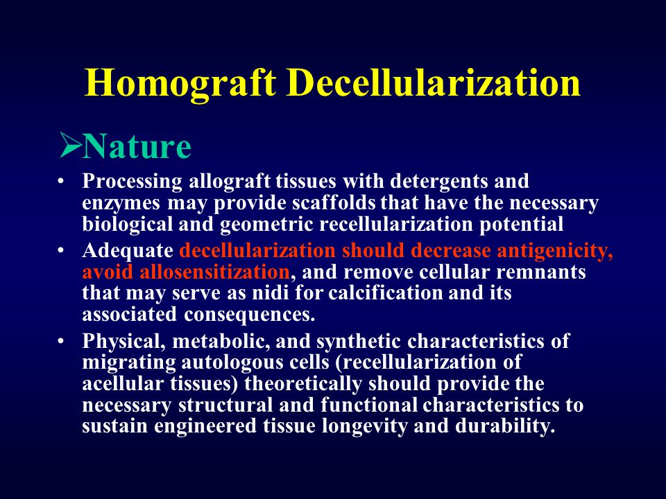 Homograft Decellularization