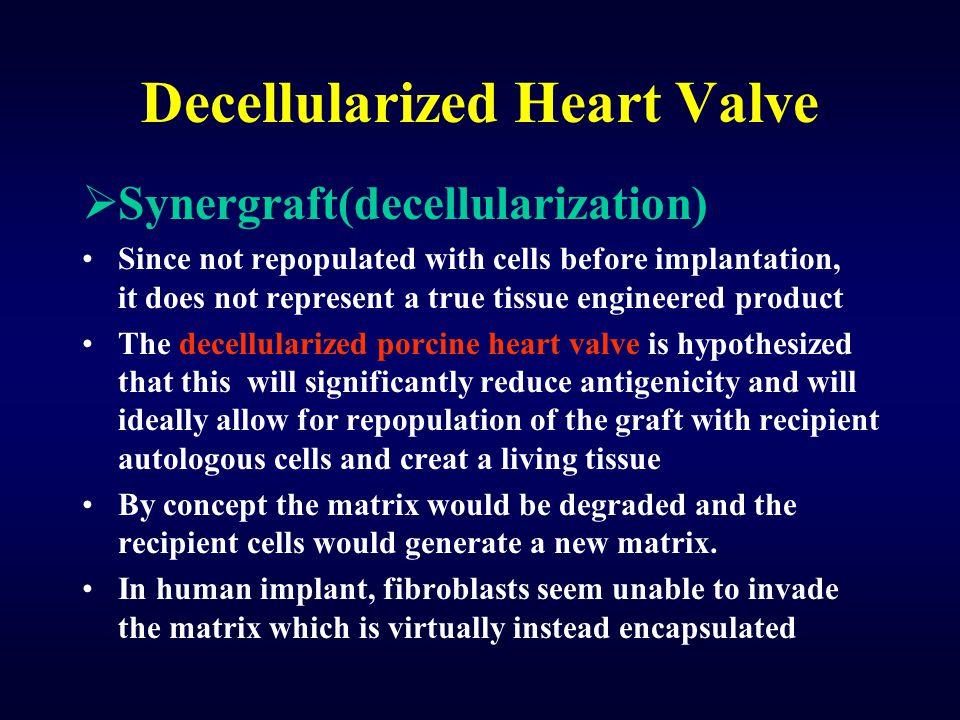 Decellularized Heart Valve