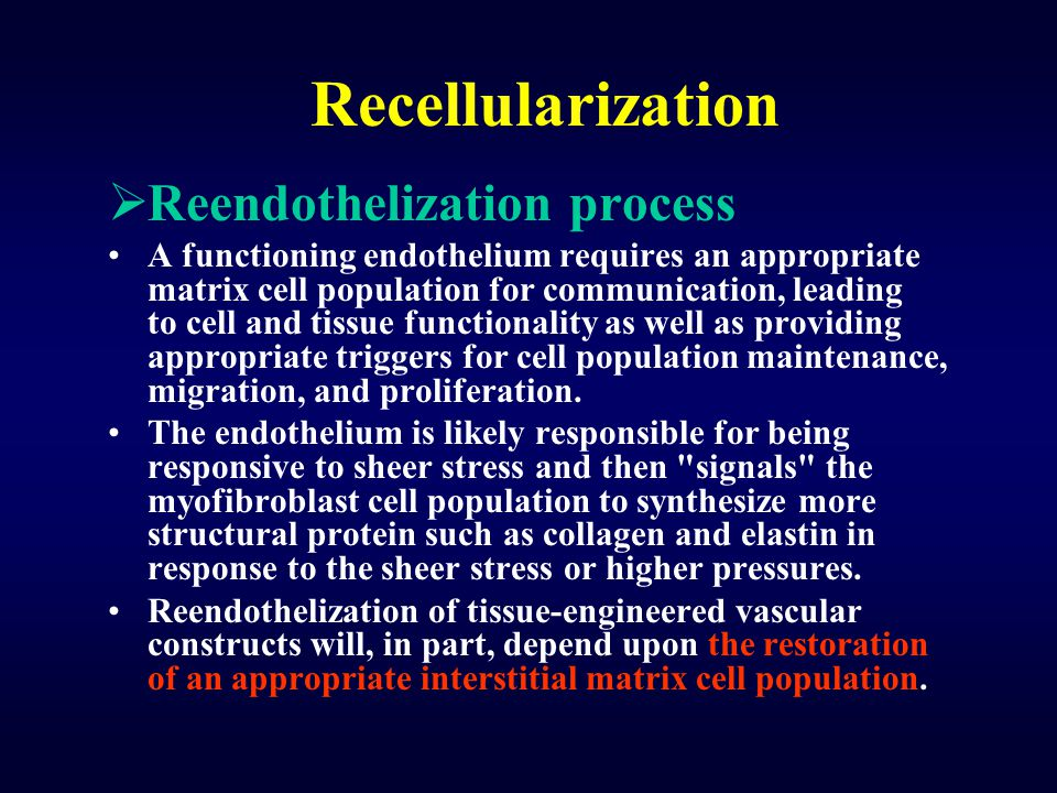 Recellularization Reendothelization process