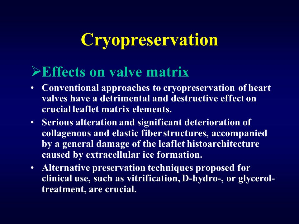 Cryopreservation Effects on valve matrix