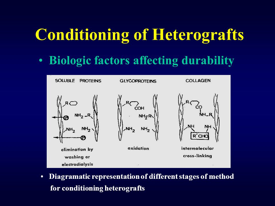Conditioning of Heterografts